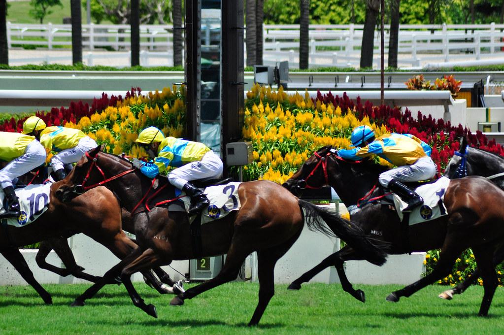 Shatin 2012 Horse Racing Season Finale 馬季季終賽馬日 ...