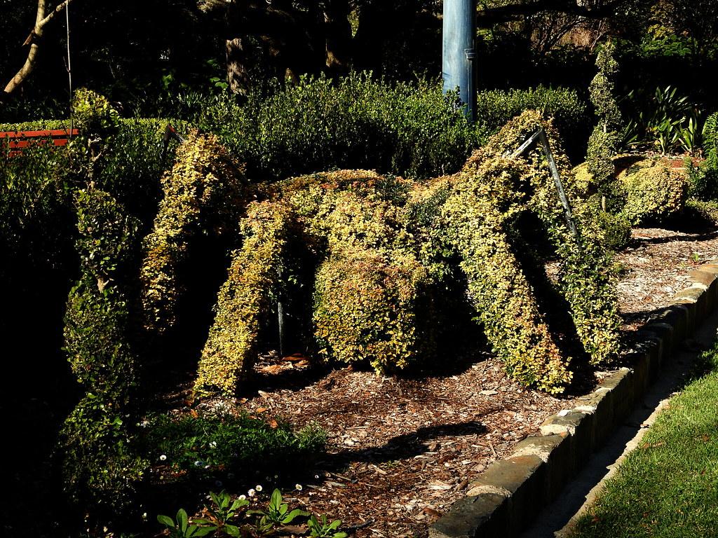 Topiary for children in Laurel Bank Gardens, Toowoomba | Flickr