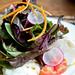 Colorova Three mozzarella salad with burrata