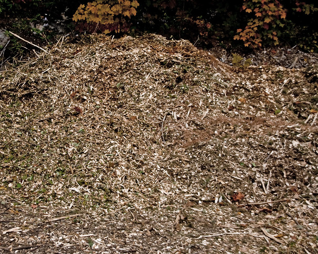 how to start a mulch pile