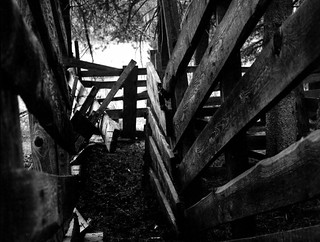 the old corral | by Sequoia!