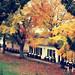 Fall on Fort Mackinac