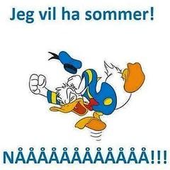 Men etter to timer sommer i Norge kommer klagene: Ååååå såååå vaaaarmt! Sommeren er lei av klagene og holder seg borte i år! Nordmenn er rare!