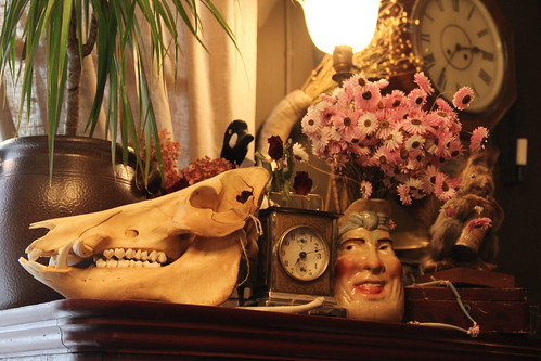 Skull, clock, and face cup display | by Curious Expeditions