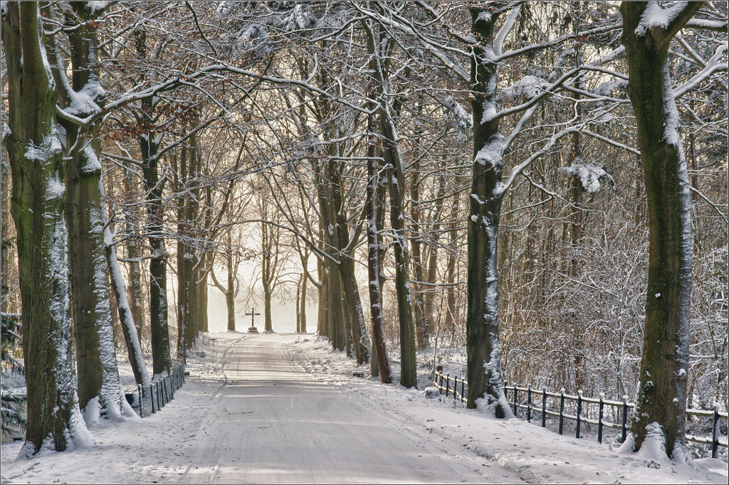 Image result for winter scene