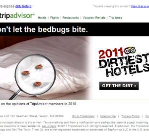Tripadvisor Bed Bugs Best Western Sikeston Mo