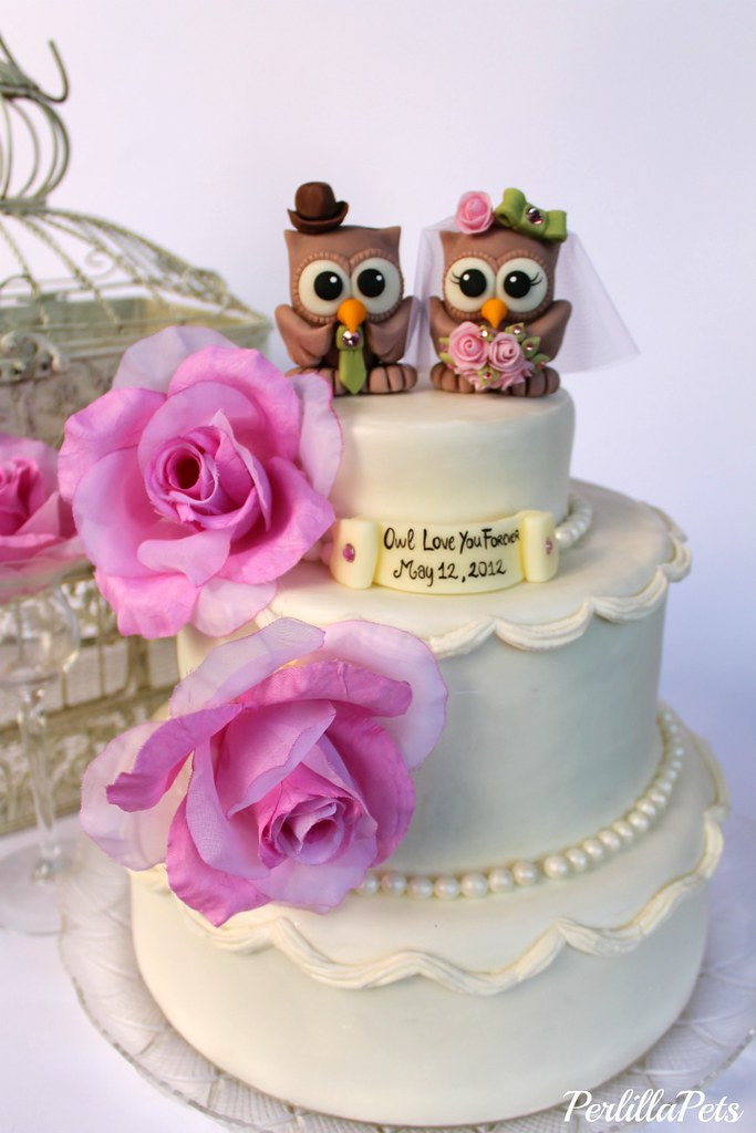 Owl Wedding Cake Topper In Pink And Green Wwwetsycomsho Flickr - Owl Wedding Cake