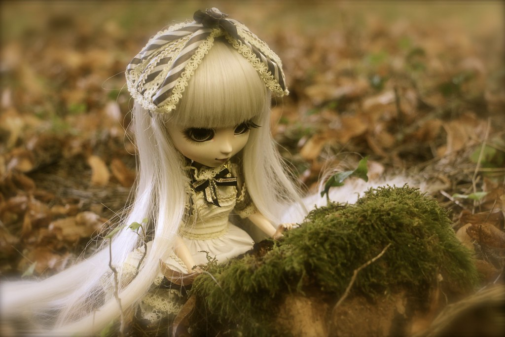 Alice, Pullip Classical Alice Sepia ♥ (News Page 3 !) - Page 3 29057559672_fbc411634a_b