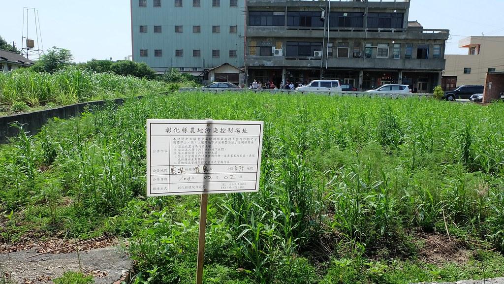 彰化頂番婆與和美地區遭到污染的農地。攝影:陳文姿。本報資料照。