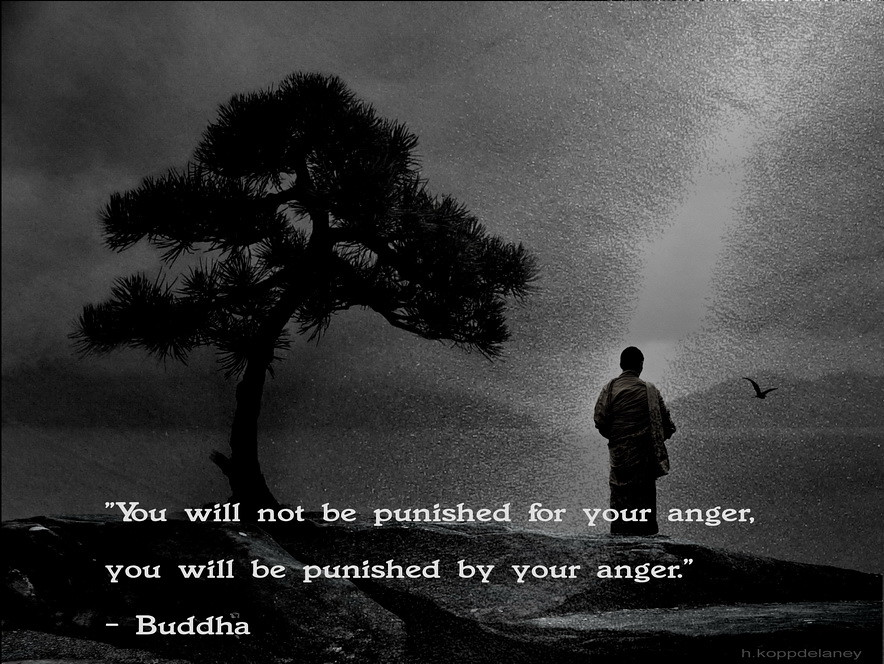 This Is The 62nd Of 108 Buddha Quotes: This Is The 58th Of 108 Buddha Quotes