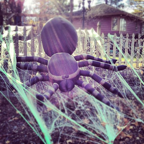 Purple Alien Spider of Death. Ames, Iowa | by Scott McLeod