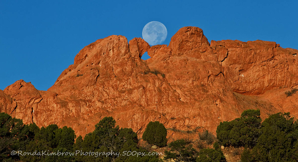 The Moon And The Kissing Camels I Had To Keep Repositionin Flickr