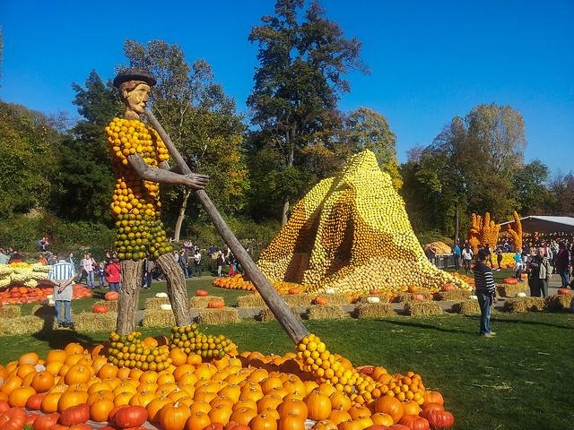 Pumpkin Festival, Blooming Baroque, Blühendes Barock, Lens Samsung Galaxy S2, Ludwigsburg, pumpkin