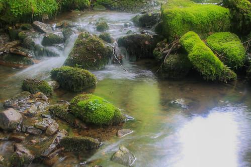 Parque Natural de #Gorbeia #DePaseoConLarri #Flickr - -907