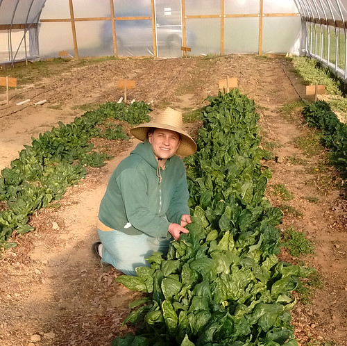 "A NRCS-funded high tunnel helps Plenty! offer year-round ""pick your own"" options for those interested in the freshest vegetables."