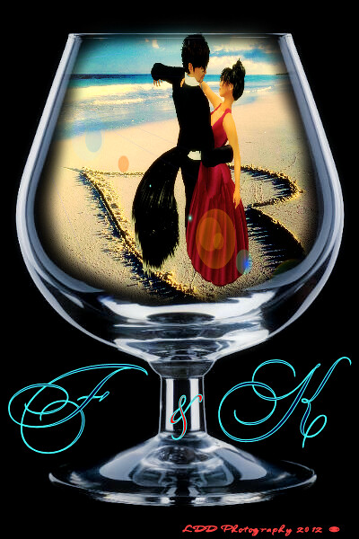 feral and kalico wine glass frame by ladydiamond destiny