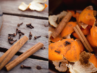 Spice and Clementine Rinds | by Simply Vintagegirl