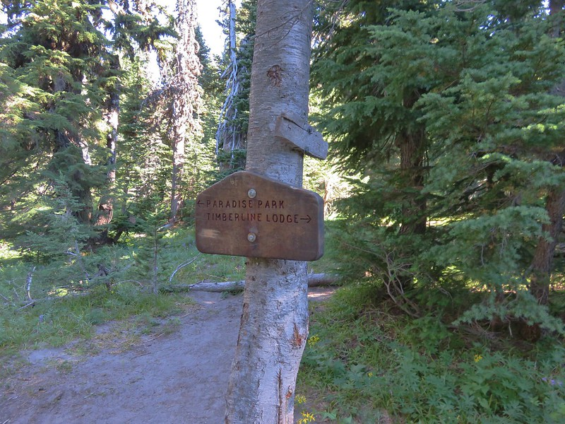 Hidden Lake Trail junction with the Pacific Crest Trail