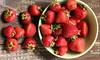 Thumbnail image for 25 Manfaat Strawberry Untuk Tubuh, Kulit dan Rambut