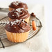 Chocolate, Olive Oil & Sea Salt Cupcakes