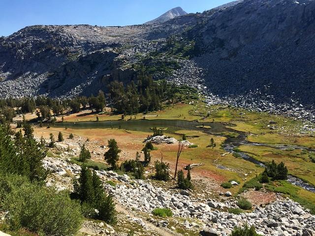 Beautiful high meadow