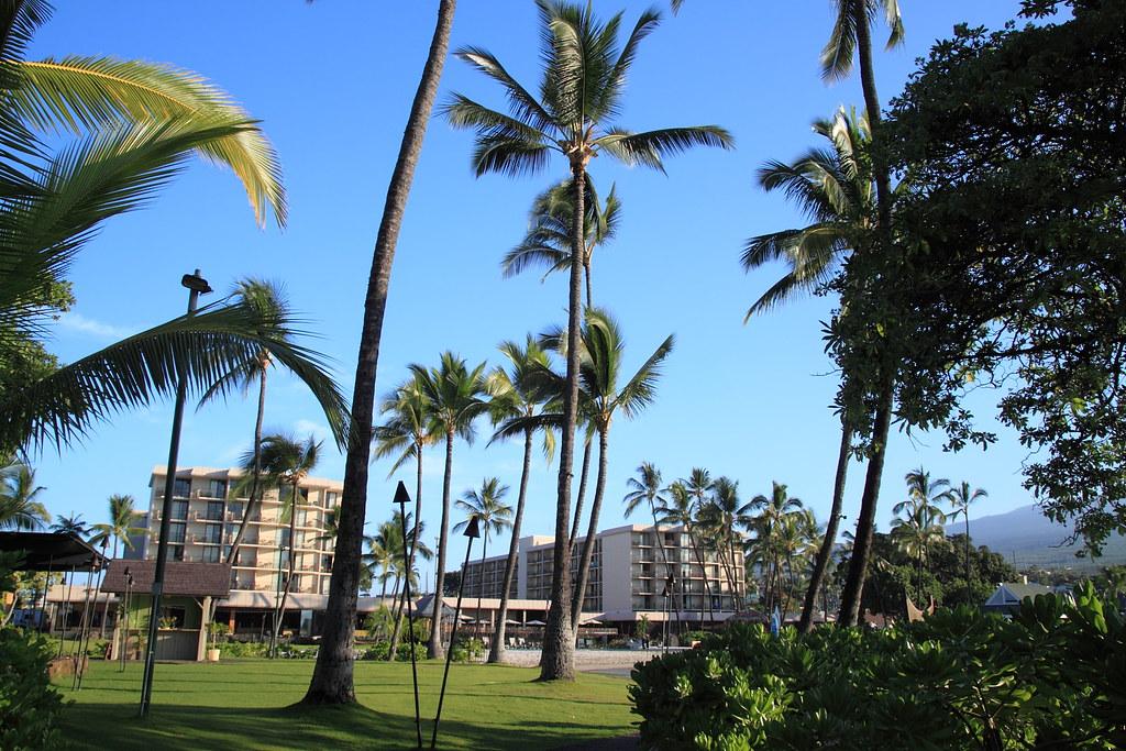 Courtyard King Kamehameha S Kona Beach Hotel Courtyard Kin Flickr