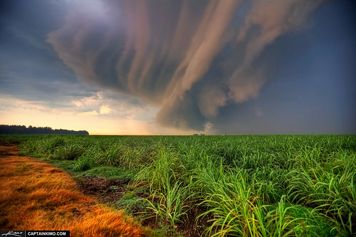 Storm-Cell-Cloud-Forming-OVer-Sugarcane-Fileds-in-Florida | by Captain Kimo