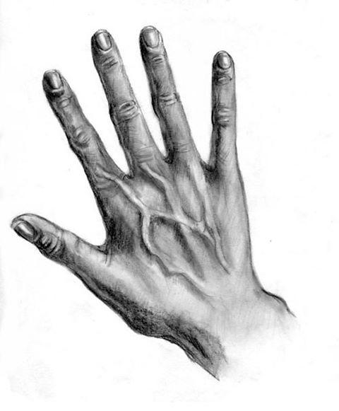 Hand Realistisch Zeichnen Anleitung Dekoking Http D Flickr