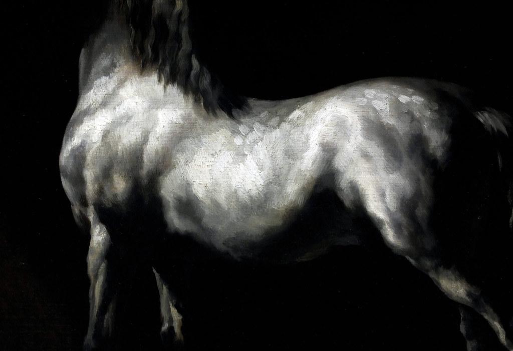 cheval arabe gris blanc gericault