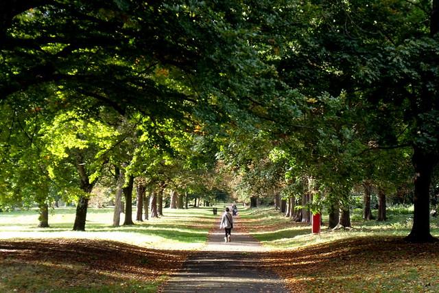 Cassiobury Park in Autumn