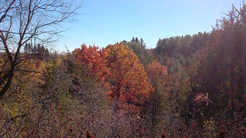 Afton State Park 10-12-2012