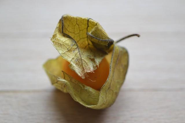 Image Result For Vitamin D Bladder