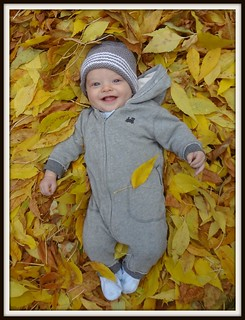 Luca in the Leaves2 | by Life Begins at Thirty, Right?