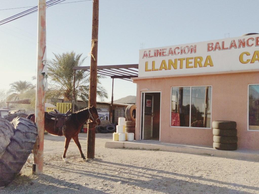 Taqueria El Bueno, in Sonoyta, Sonora, Mexico...