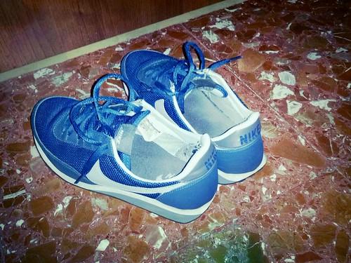Nike Nylon Shoes