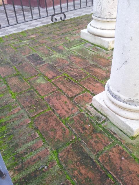 Manchas de moho en suelos de barro cocido en esta foto - Suelos barro cocido ...