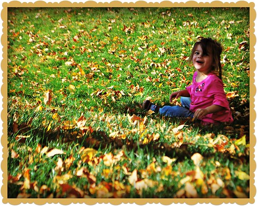 Rolling in the leaves and down the slope is lots of fun
