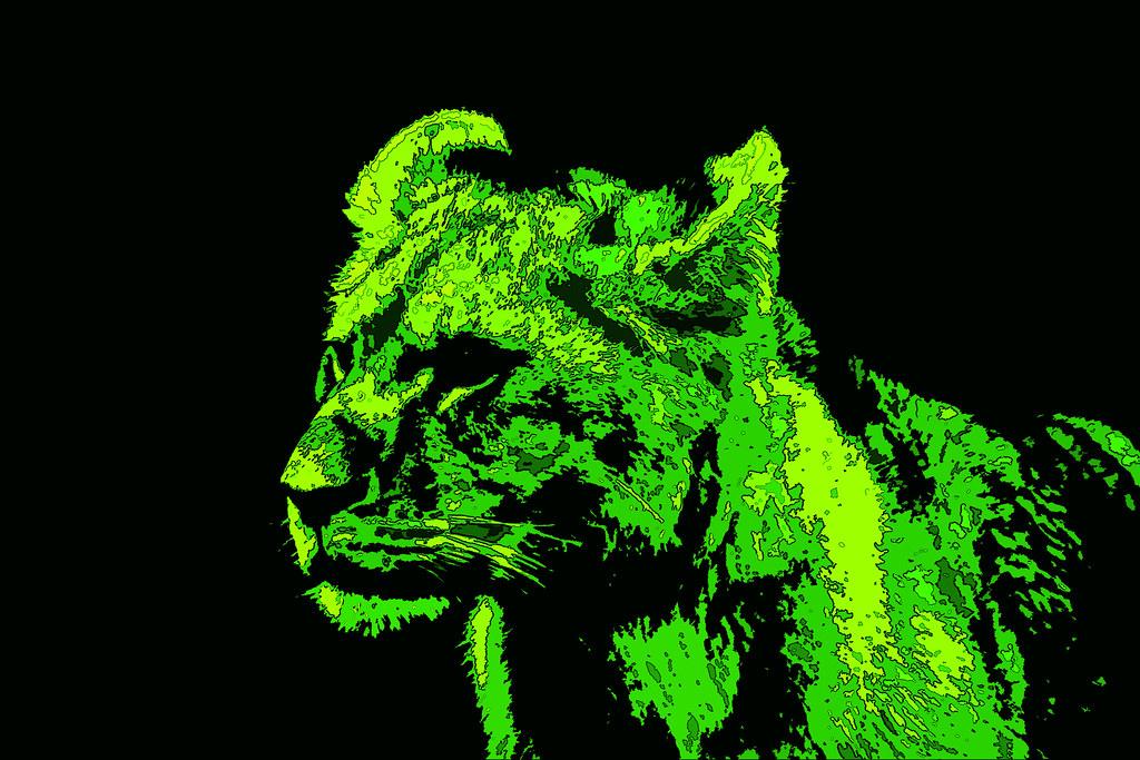 Lion Cub Neon Green   PeacockArmageddon   Flickr
