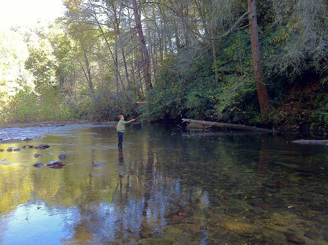 Photo for Davidson river fly fishing