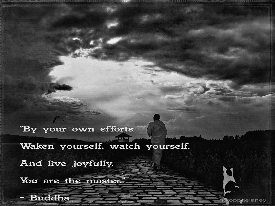 This Is The 62nd Of 108 Buddha Quotes: This Is The 80th Of 108 Buddha Quotes