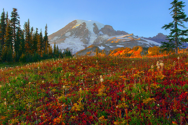 Mount Rainier In The Fall This Is An Image From Mount