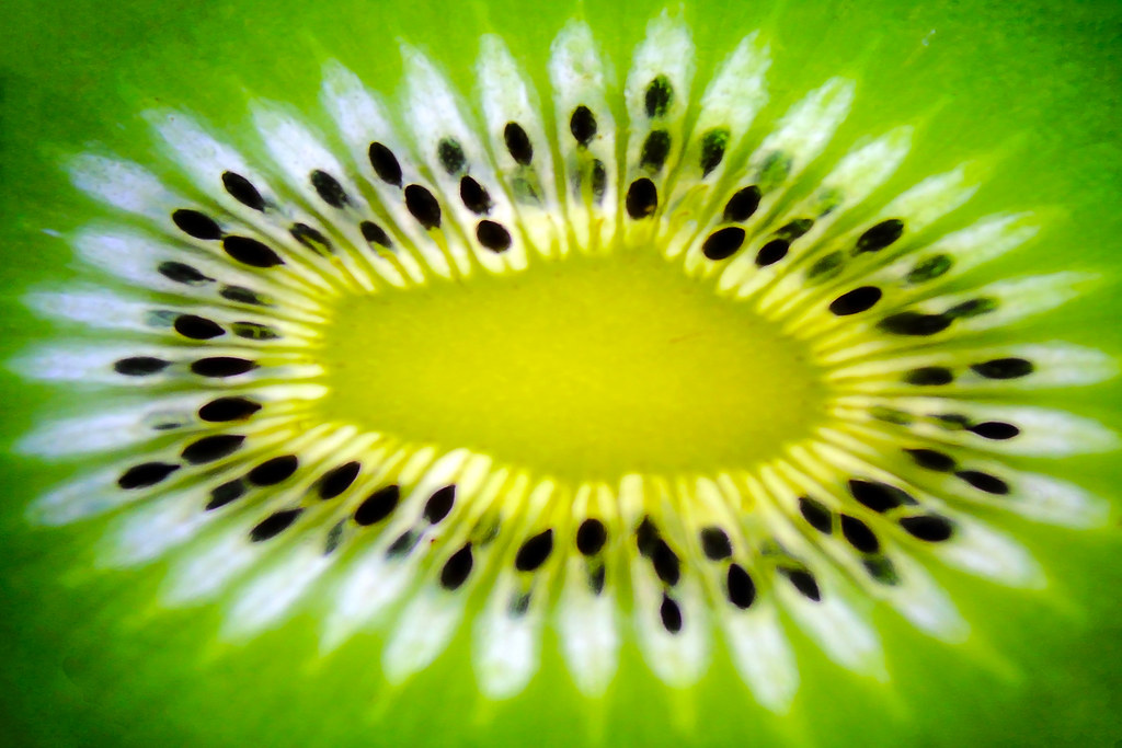 Kiwifruit Core For Theme Quot Fill The Frame With Food