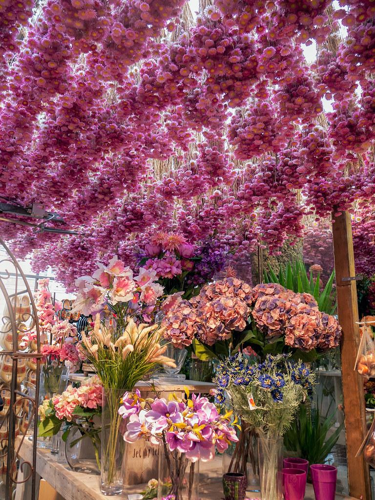 Amsterdam flower market hanging garden flowers hang - Jonathan s restaurant garden city ...