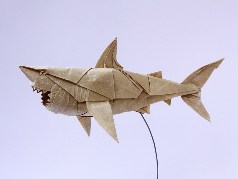 Great White Shark My Old Design Refolded For The Ultimate Flickr