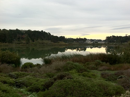 Lake Merced - Reflections | by queenkv