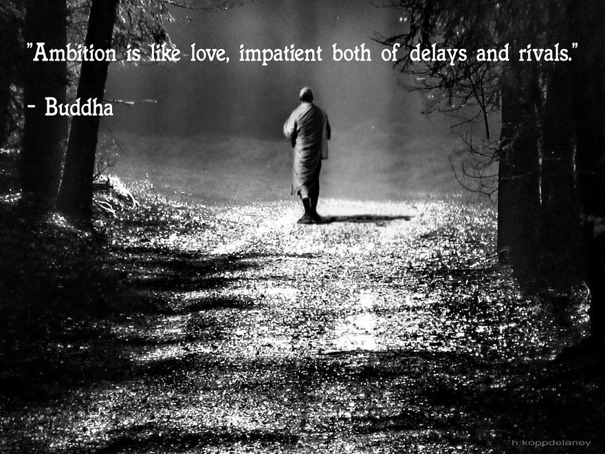Buddha Quotes Tumblr Stunning Buddha Quote 101  This Is The 101St Of 108 Buddha Quotes …  Flickr