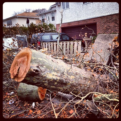 Wrath of #Sandy | by Louis Trapani