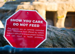 Do Not Feed Animals | by lukasz007