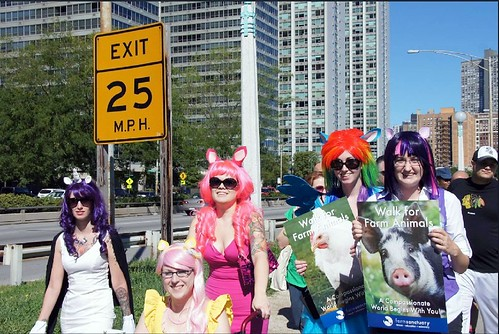 2012 Chicago Walk | by Farm Sanctuary