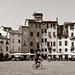 Luca Italy
